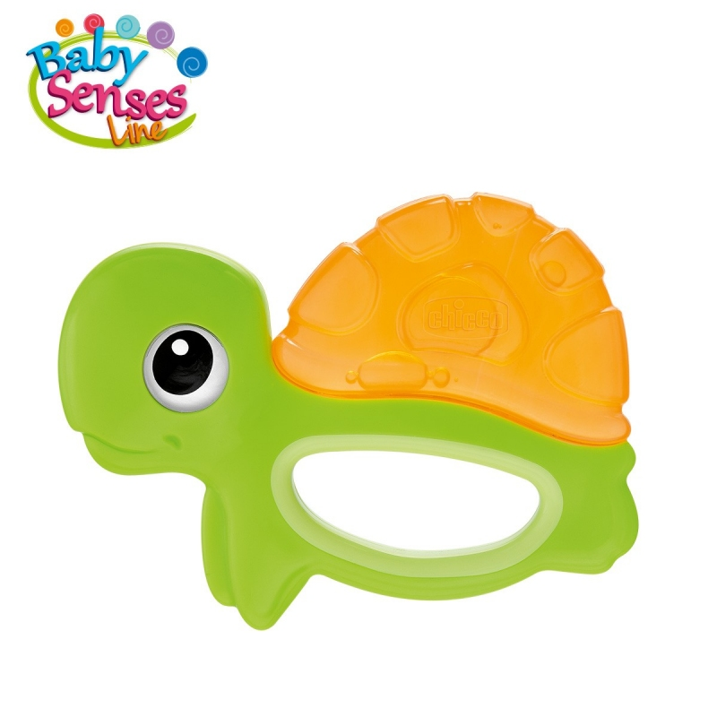 TORTUE CHICCO FRAICHE DENTITION